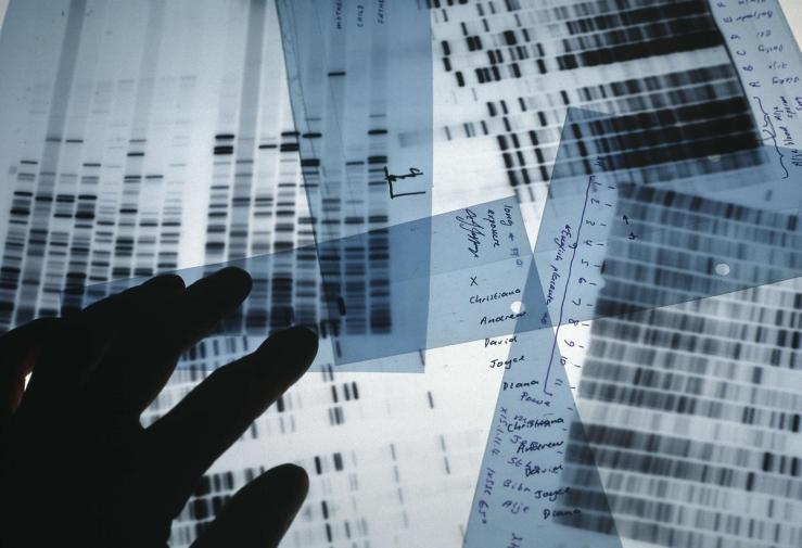 20111101035702DNA_testing